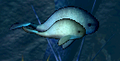 Kyutai Whales.PNG